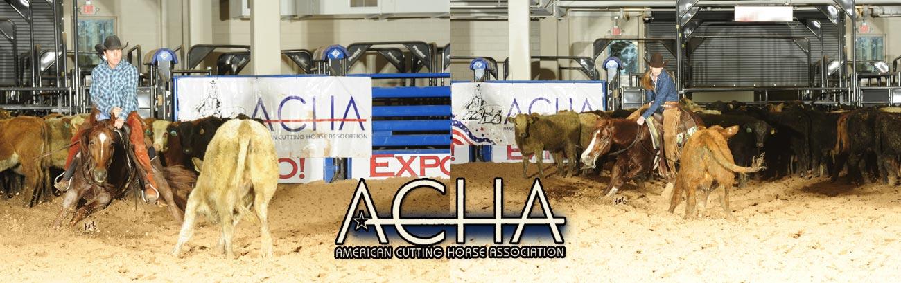 ACHA - American Cutting Horse Association